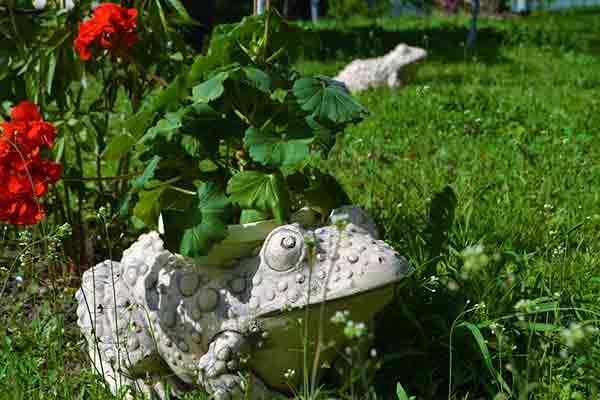 Кашпо для цветов Лягушка