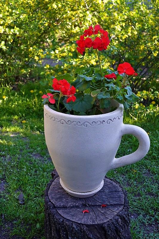 Цветочный горшок в виде чашки