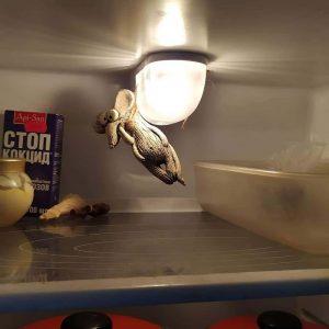 Мышь повесилась