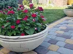 горшок-плошка для цветущих растений