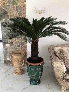 Французский вазон в тёмнрзелёном цвете